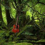 Angus delaissais sa guitarre